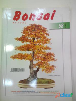Revistas bonsai actual