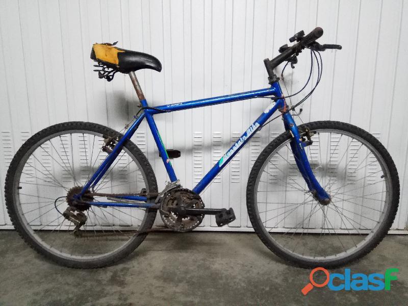 Bicicleta Basica de Montaña