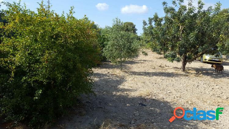 Finca rustica en santa oliva