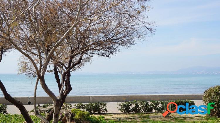 Se vende planta baja techo libre, zona llucmajor-arenal-palma