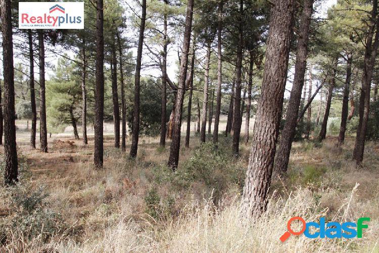 JTOportunidad de parcela a dos caras en Marugán (Segovia) 2