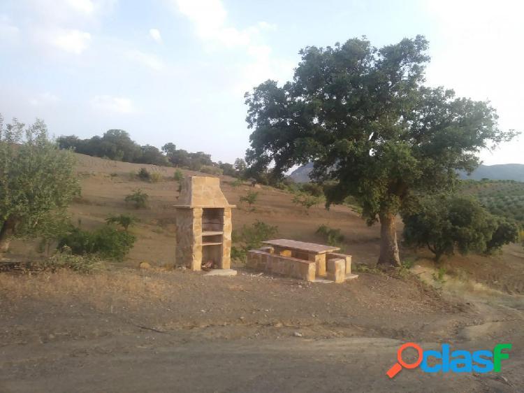 Alquiler vacacional de un Cortijo entre Chirivel y Oria 1