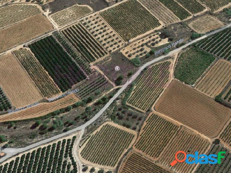 Terreno secano sin cultivar a 2 km de cheste, a pie de camino asfaltado y con muy poco desnivel.