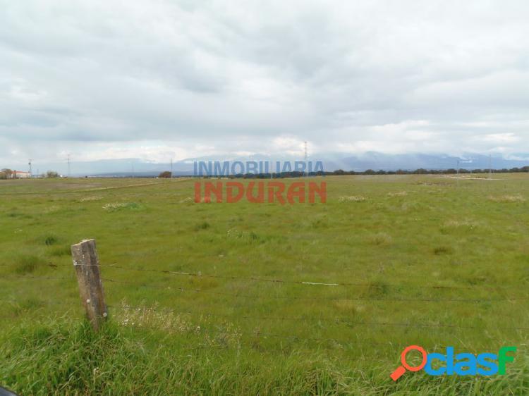 Finca ganadera situada a 3km del municipio de navalmoral de la mata (cáceres)