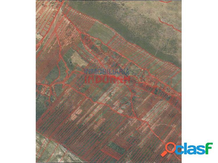 14,94 hectáreas de suelo rústico con monte mediterráneo, ideal para uso cinegético, en el término municipal de mesas de ibor (cáceres)