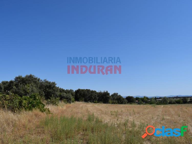 Finca ganadera y agrícola en las proximidades del municipio (cáceres)