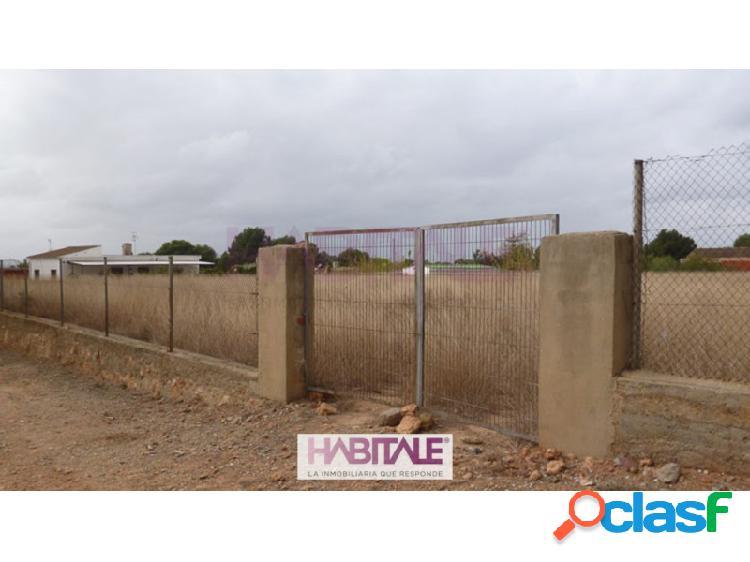 Parcela llana de forma rectangular, en suelo urbano de 5000m2. apta para edificar. posibilidad de segregar parcelas más pequeñas a razón de 50€ el m2.