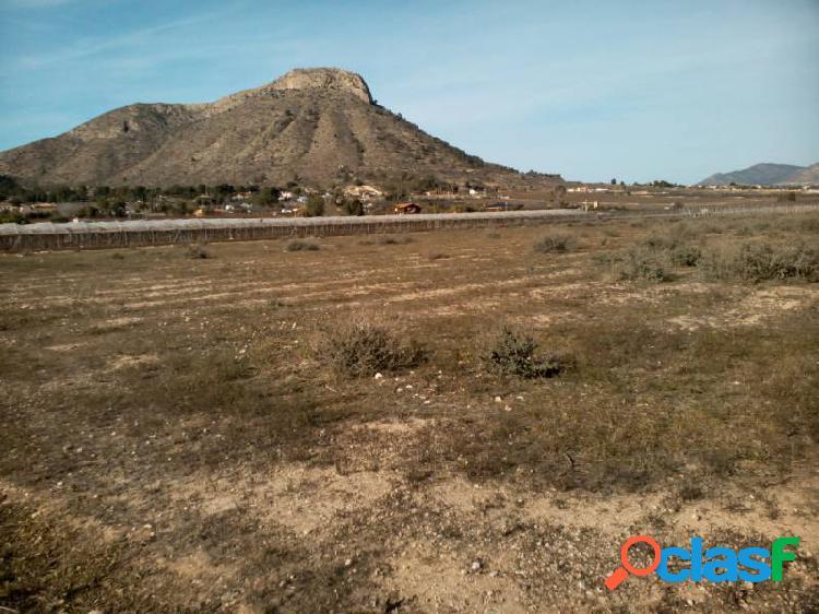Venta de parcela de 10.250 m2 en aspe en buena zona con agua de riego con buenas vistas