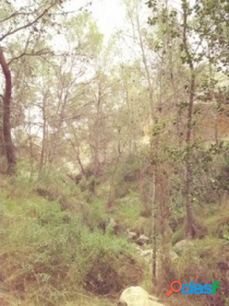 Terreno urbanizable en la sierra de abanilla