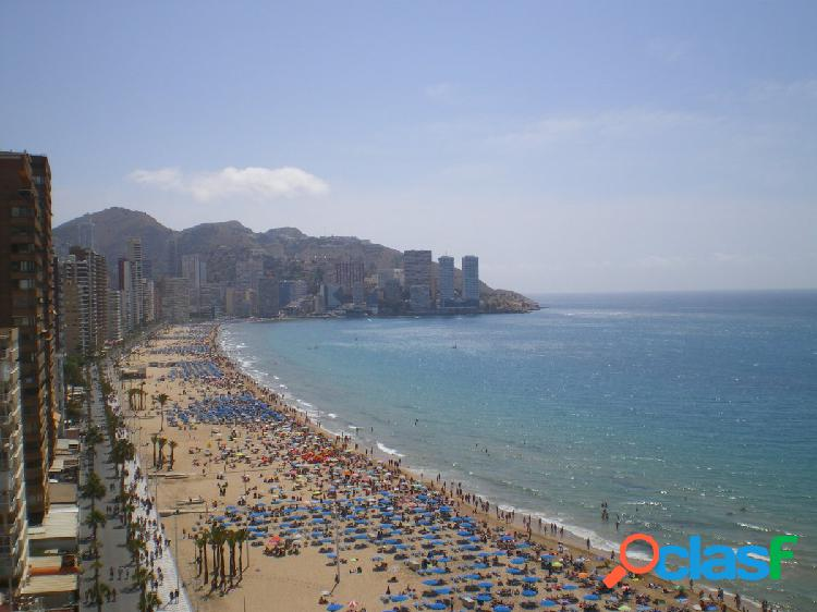 Fantastico piso 1ª linea de playa en levante la mejor zona de benidorm