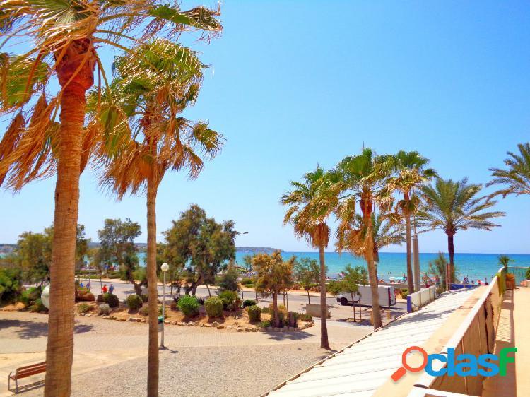 Piso con terraza y vistas a la playa de palma en arenal