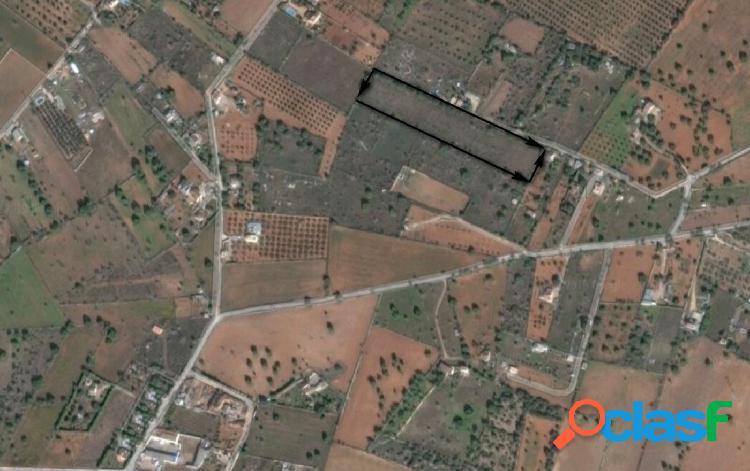 Terreno rústico de 10.000 m2 en llucmajor