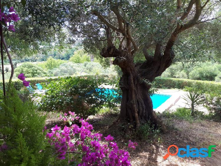 Encantadora finca en una zona muy tranquila, bonitas vistas, también ideal para b&b