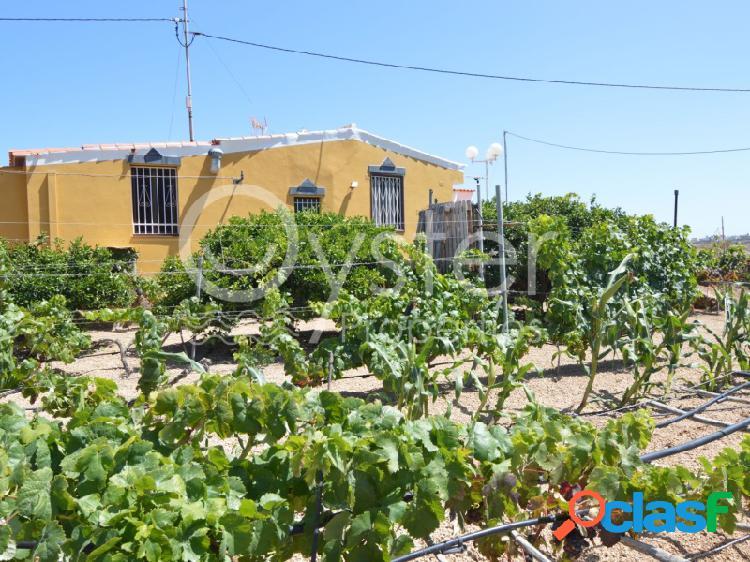Casa de campo con viñedos