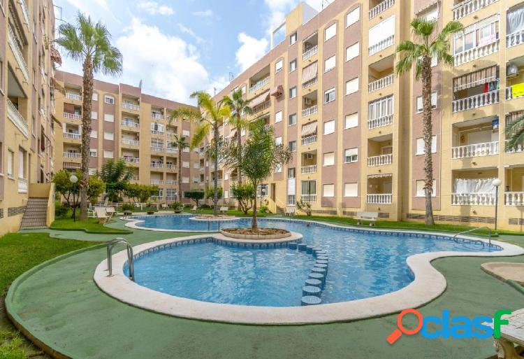 Coqueto apartamento 1 dormitorio con piscina, en torrevieja
