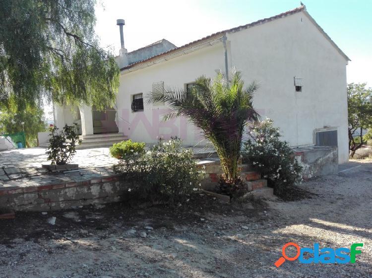 Elda: finca de 7.800 m2 con dos viviendas independientes, zona agualejas. 160.000 €