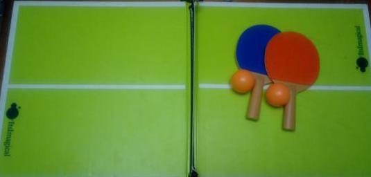 Mini mesa de ping pong plegable