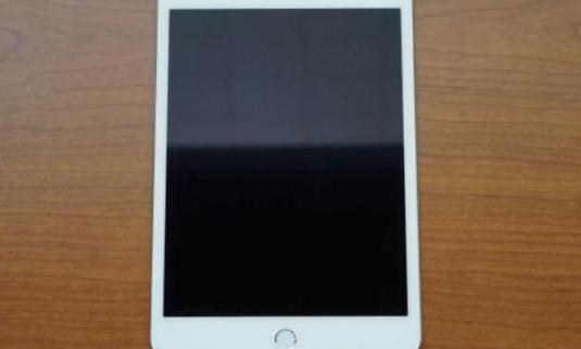 Ipad mini 16gb wifi a1432 liquidacion 1 año ga...