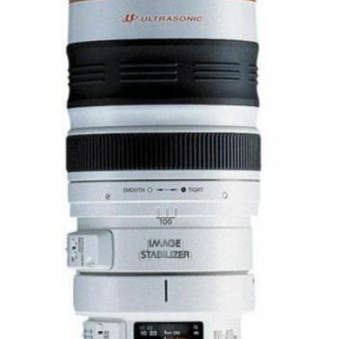 Canon ef 100-400 mm f4.5-5.6 l is usm