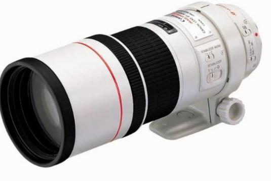 Canon ef 300 mm f4 l is usm