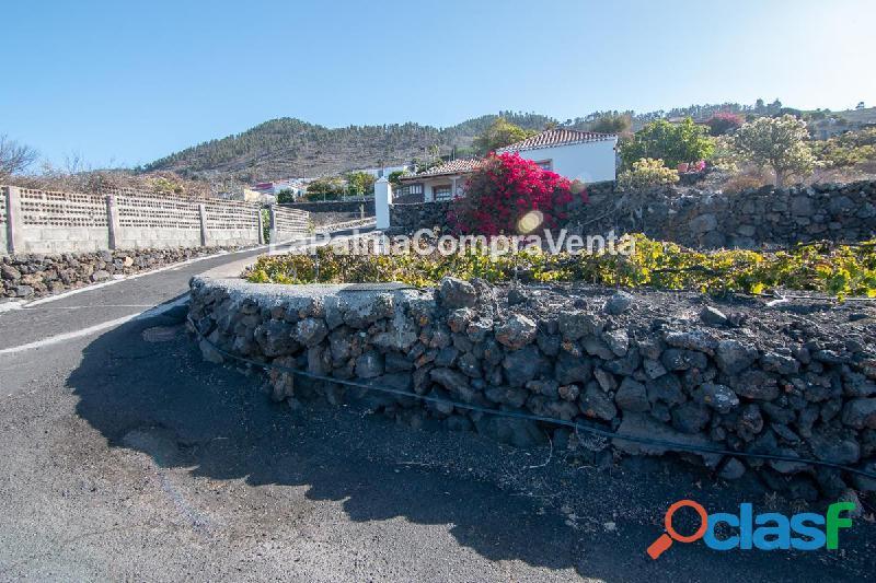 ID 371 Buen terreno ubicado en una zona muy buena para el cultivo de Viñas 2