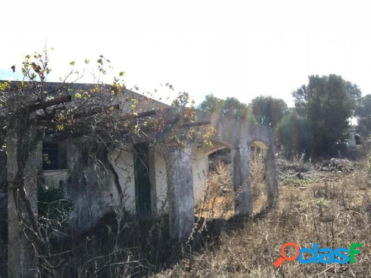 Parcela con casa antigua