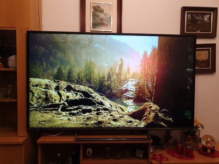 Televisión panasonic led 55 pulgadas