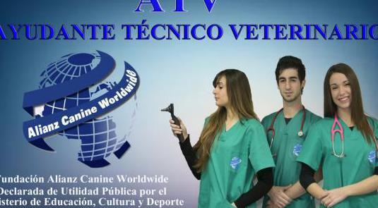 Curso ayudante técnico veterinario