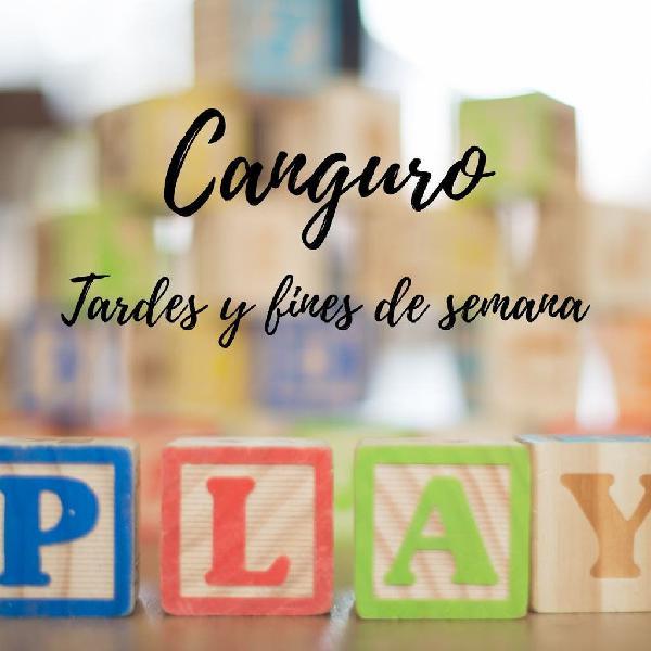 Niñera, Canguro, Babysitter