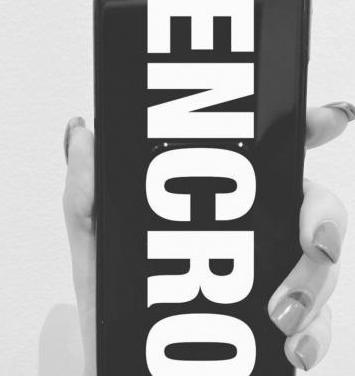 TELEFONIA ENCRIPTADA ENCRO