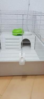 Jaula para conejos o roedores