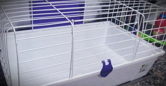 Jaula para roedores