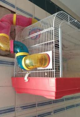 Jaula hamster angora