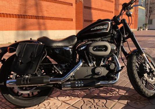 Harley davidson sportster xl 1200c (2011-2050)