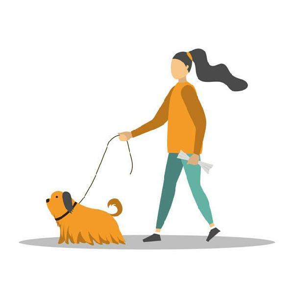 Paseadora y cuidadora de perros
