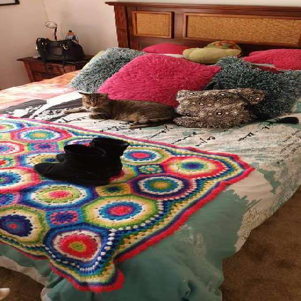Regalo cama americana 2 plazas base dividida