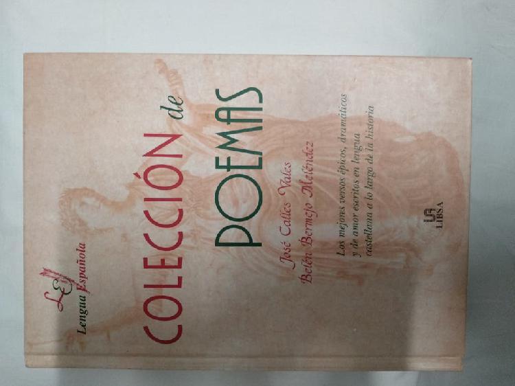 Libro colección de poemas