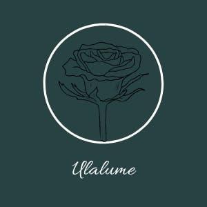 Ulalume. cartas y poemas personalizados