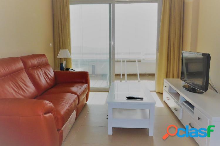 Apartamento 1 dormitorio puerto la torre