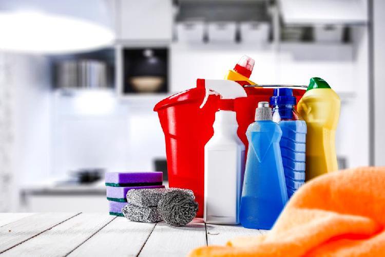 Limpieza, cuidado de niños y personas mayores