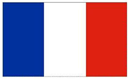 Clases particulares francés para cualquier nivel