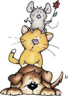 Alojamiento y cuidado de animales