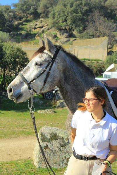 Doma y monta de caballos.