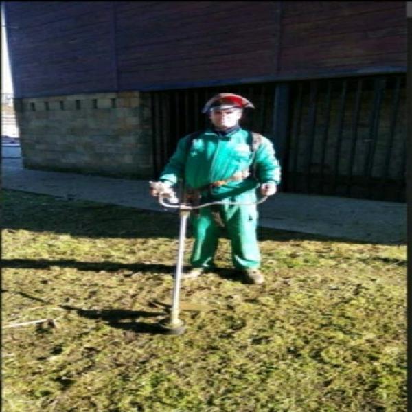 Jardinero. busco trabajo
