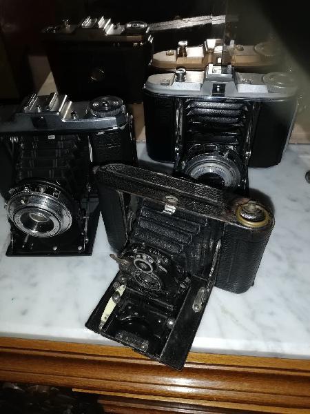 Se venden cámaras de fotos antiguas