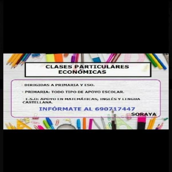 Apoyo/clases particulares/academia/refuerzo