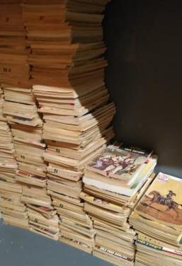 320 novelas de bolsillo