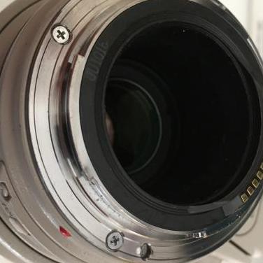 Objetivo Canon EF 100-400 L