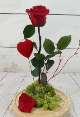 Rosa pelicula la bella y la bestia