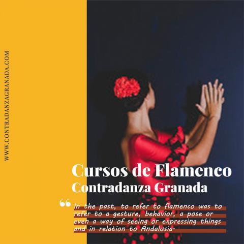 Escuela de danza y flamenco y mucho +